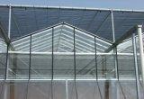 Tipo serra di Venlo della Multi-Portata del rifornimento di Direc della fabbrica di vetro