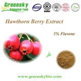 Weißdorn-Beeren-Auszug-Flavon 5%