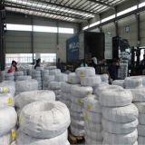 China-Hersteller aller Aluminiumleiter-obenliegende Leiter
