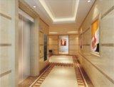 Elevación/elevador caseros residenciales (RLS-127)