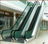 Movimentação quente de Vvvf da venda escada rolante da HOME de 30/35 de grau com serviço do OEM