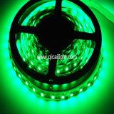 Un nastro dei 3528 LED, tubo impermeabile, 60LED/M