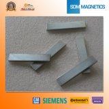 고품질 N33h 네오디뮴 구획 자석