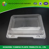 Fabricant Support Utilitaire Blister Pet Food Container