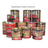 2 quilogramas 1 podem pasta de tomate do puré do tomate 28 30