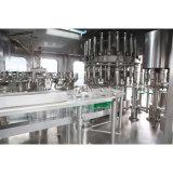 Оборудование стеклянной бутылки спирта рябиновки высокого качества заполняя
