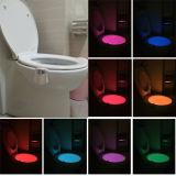 Свет туалета датчика самомоднейшей конструкции СИД миниый