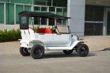 Coche turístico eléctrico 5kw del cupé antiguo durable del modelo de Rariro T
