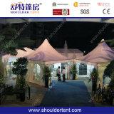 Tenda esterna di vendita calda (SDG450)