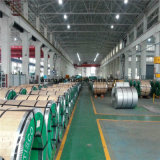 bobina decorativa del acero inoxidable 316L