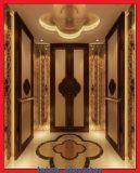 2 مضادّة مدخل مسافر مصعد مصعد مع آلة [رووملسّ]