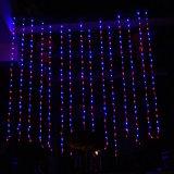 Cor clara do diodo emissor de luz da cascata decorativa da cachoeira 3m*3m opcional para o casamento