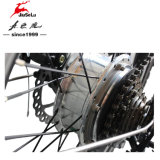 """20 """" чернота рамки 250W алюминиевого сплава складывая велосипед e (JSL039XH-4)"""