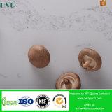 Matériaux de construction conçus par Nuvo de brames de quartz de Calacatta