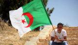 Su ordinazione impermeabilizzare e modello no. della bandiera nazionale dell'Algeria della bandiera nazionale di Sunproof: NF-062