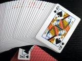 533 больших карточки бумаги качества казина верхней части кочки играя