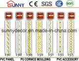 Nuevamente cornisa del yeso del diseño/cornisa del poliuretano Cornice/PU Line/PU