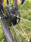 Nuevo Diseño Fat Tire Eléctrica de 3 ruedas Trike con Fat Tire