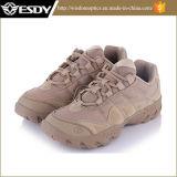 Esportes ao ar livre que caminham sapatas táticas do combate do exército militar da caça