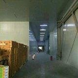 Equipo refrigerado almacén vegetal