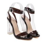 Sandales à talons hauts à la mode en Europe (HT-S1002)