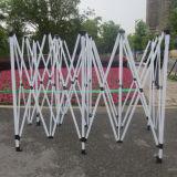 Stahl mit der Energien-Beschichtung angepasst, abnehmbares Gazebo-Pagode-Zelt bekanntmachend