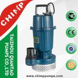 Pompa ad acqua elettrica sommergibile della famiglia di Qdx piccola per acque pulite
