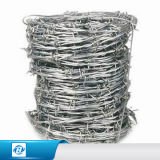China-Fabrik-Qualität galvanisierte Stacheldraht-Preis fachkundigen Hersteller