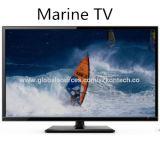 32 Zoll-Salz-Abnutzung-Widerstand Marine-Fernsehapparat mit Gleichstrom-Kabel an Bord der Anwendung, keine Begrenzung für Land