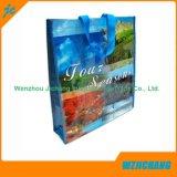 Sac à provisions non tissé stratifié de pp, sac d'emballage, un sac plus frais, sac de toile