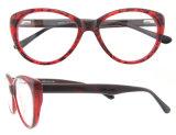 Las lentes populares enmarcan los últimos nuevos vidrios del ojo de gato de los marcos ópticos