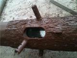 Tour Bionic durable de télécommunication d'arbre