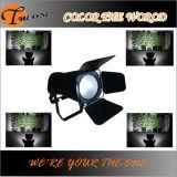 La IGUALDAD profesional del efecto de etapa LED puede