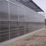 농업과 상업적인 폴리탄산염 온실 중국제