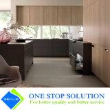 Muebles muy populares de las cabinas de cocina del final de la chapa del color del café (ZY 1062)