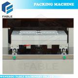 Halbautomatische Tellersegment-Vakuumverpackungsmaschine für Reis (FBP-450)