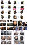 28g het nieuwe Poeder van de Camouflagestift van het Haar van de Vezels van de Verkoop van de Fabriek van de Aankomst direct Dame Hair Fibers