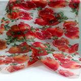 Tessuto domestico dell'indumento della tessile stampato poliestere di disegno della frutta
