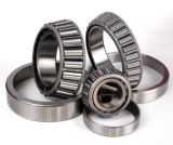 High Quality Taper Roller Bearing/Tapered Roller Bearing