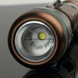 Lumière portative avec la batterie de Li-ion