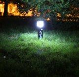 Aluminium stellte Solarbewegungs-Sensor her, im Garten zu arbeiten Leuchte (FQ-749)