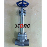 API 602 Forge Steel Gate Valve com 150 ~ 800lb