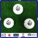 Hotsaleのカスタムプリント二つの部分から成った方法のゴルフ・ボール