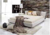 bed (B029) 간단한 현대 고품질 가죽 임금