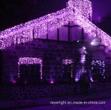 옥외 훈장 크리스마스 LED 다채로운 끈 빛