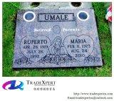 Pietra tombale piana dell'indicatore nel cimitero