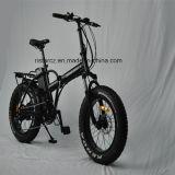 20 인치 500W 뚱뚱한 타이어 E 자전거 Rseb-507