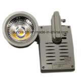 Nouveau Design DEL Lighting 30W COB DEL Tracklight pour Shops (S-L0020)