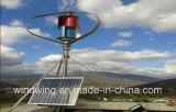 generador de turbina aprobado de viento del CE 1000W para el uso casero