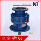 Reductor Cycloidal de Bwd con el motor eléctrico
